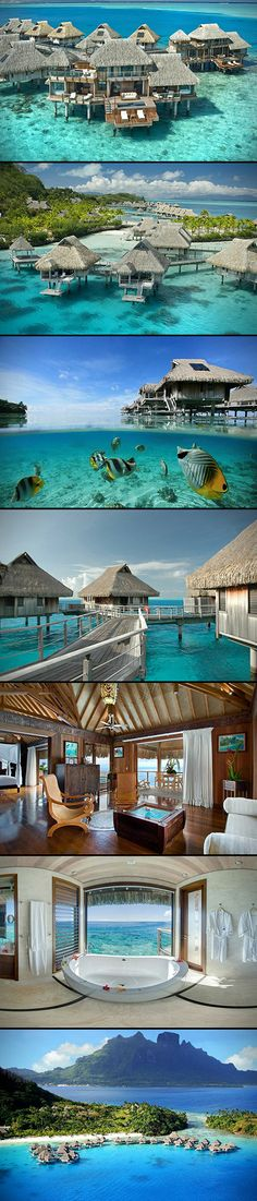 If you dream of white sand beaches, blue lagoons, and overwater bungalows, then you need to pencil in a vacation at the beautiful Hilton Nui Resort in Bora Bora.  Whether you like to lounge by the pool with a cold beer in hand, or hit the open waters for some snorkeling, this resort has it all. This place has 800 meters of white sand beach along with some of the most breathtaking views on planet Earth. Guests can enjoy diving adventures, snorkeling sessions, water sports like jet skiing, ...