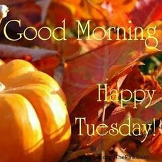 Good Morning! Happy Tuesday! Time to rise and shine, grab your coffee, and enjoy this first day of Fall! Make the most of the day and enjoy life! #GoodMorning #HappyTuesday #TuesdayThoughts #coffetime #tuesdayvibes #1stDayOfFall #mornings #love #coffee #autumn Good Morning Tuesday Wishes, Good Morning Rainy Day, Happy Tuesday Quotes, Tuesday Humor, Good Morning Happy, Morning Wish, Happy Weekend, Rainy Days, Weekend Quotes