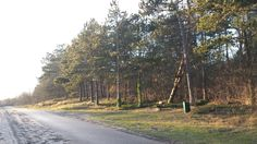 Duinweg