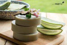 bars of aloe vera soap with slices of fresh aloe