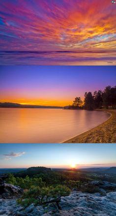 Sunset conifers
