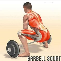 Упражнения для мышц ног #fitness #exercises