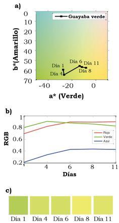 Filoteo-Razo, J. D., Estudillo-Ayala, J. M., Hernández-García, J. C., Jáuregui-Vázquez, D., Rojas-Laguna, R., Valle-Atilano, F. J., & Sámano-Aguilar, L. F. (2016). Sensor RGB para detectar  cambios de color en piel de frutas [Figura 5]. Acta universitaria, 26(NE-1), 24-29. doi: 10.15174/au.2016.859