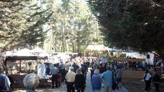 Jewish Festival Carmel Valley Canada #property_in_santacruz Jewish Festivals, Carmel Valley, Canada, Events, Holidays, Outdoor, Santa Cruz, Outdoors, Holidays Events