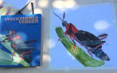 Dreng fra 0. Klasse har tegnet insekt