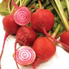Chioggia Beet Conventional & Organic