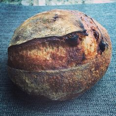 Fig & pecan country loaf #fig #pecan #countryloaf #sourdough #tartine #bread #wildyeast
