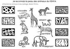 Google Image Result for http://www.minimat.net/projets/terrepeuples/afriquepelages.gif