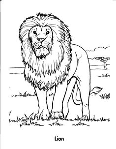 Lion Coloring Page | FIAR Volume 3 | Pinterest | Lions, Animal and ...