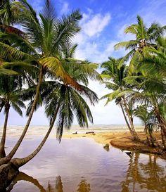 Freshwater river at Las Terrenas beach, Samana peninsula | Dominican Republic Free Travel Guide