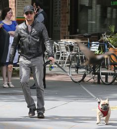 "Jeremy Renner ""You don't own the dog.  You can provide a nice lifestyle for them, but you don't own them.  You're just lucky enough to share experiences together."" - This man GETS dogs"