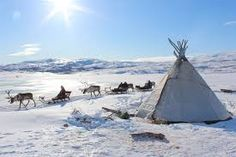 Lapland Reindeer Sleigh Ride from Tromso, Norway - Lonely Planet Tromso, Reindeer And Sleigh, Lappland, Winter Wonderland Christmas, Arctic Circle, Christmas Scenes, Whale Watching, Reno, Scandinavian Christmas