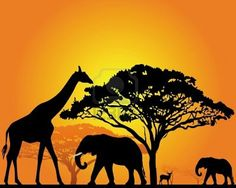 black silhouettes of African animals in the savannah on an orange background Stock Photo
