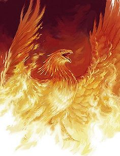 Phoenix rising from the flames (artist?) - (forum-sherwood tavern)