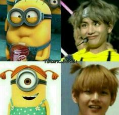 Ideas Funny Bts Memes Fandoms For 2019 Bts Bangtan Boy, Bts Taehyung, Bts Boys, Bts Jimin, K Pop, Bts Memes Hilarious, Bts Funny Videos, Foto Bts, Frases Bts