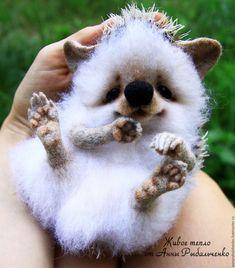Купить Ёжичка Глашенька - белый, коричневый, ежик, еж, ежик игрушка, ежик из шерсти