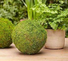 Oversized Moss Balls