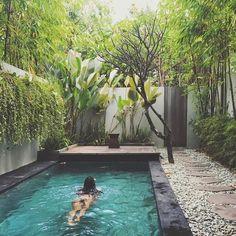 outdoor oasis backyard with pool - outdoor oasis . outdoor oasis on a budget . outdoor oasis backyard with pool . outdoor oasis backyard on a budget . outdoor oasis on a budget diy ideas .