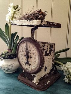 vintage scale French Decor, French Country Decorating, Old Scales, Shabby Chic Farmhouse, Country Farmhouse, Modern Farmhouse, Farmhouse Decor, Primitive Kitchen, Kitchen On A Budget