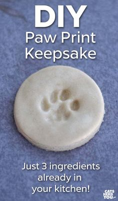 DIY Paw Print Keepsake - Use salt dough to make a paw print keepsake using things you probably already have in your kitchen! dog DIY Cat Paw Print Keepsakes - Cats Herd You Paw Print Crafts, Paw Print Art, Dog Crafts, Dog Paw Prints, Cat Paw Print Tattoo, Cat Paw Tattoos, Cat Prints, Dog Paw Art, Pet Paws