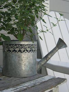 pretty zinc watering can