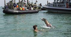 US Leads Mideast Anti-Mines Maritime Exercise #MiddleEastAfrica  http://khumaer.com/us-leads-mideast-anti-mines-maritime-exercise/