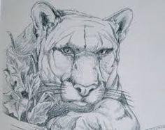 Resultado de imagem para western drawing style