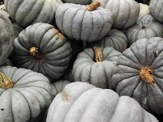 Monochromatic pumpkins: very chic. #creepitreal