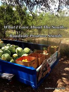 What I love about the South... Roadside produce stands