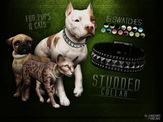 ○● DOWNLOAD ON MY SITE ●○*New Meshes*- necklace category - 15 swatches - all LOD's - unisex - for pups and cats - HQ textures - custom thumbnails TERMS OF USE Also if you like what I do, you can check out my donation page. No pressure tho.
