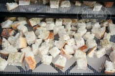 dehydrator Croutons and Bagel Chips