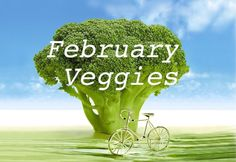 For uber fresh grocery shopping, here is a list of the veggies that are currently in season for the month of February: broccoli, brussels sprouts, butternut squash, cabbage, cauliflower, fennel, kale, leeks, parsnip, potato, radishes, sweet potato, & turnip! Happy shopping!   #february #seasonal #vegetables #veggies #grocery #shopping #lists #wholefoods #healthy #eating #healthyliving #thedailyvitamin