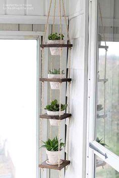 Aprenda a fazer um lindo jardim vertical!!