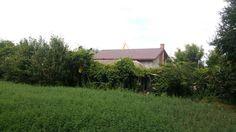 Movilita, la intrare pe soseaua spre Fierbinti, vanzare casa locuibila cu teren in suprafata de 970mp, deschidere la sosea de 30ml, electricitate, put pentru apa, vita de vie, pomi fructiferi, idea…