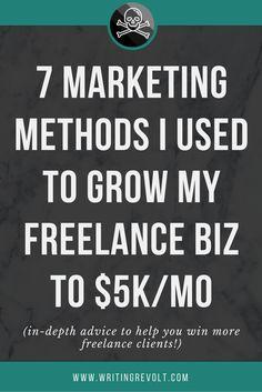 Resume CV Cover Letter  freelance writer blogger content writer     Template Monster