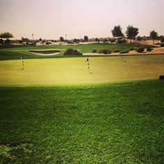 Els Club Dubai looking in good condition today, nice breeze #dubai #abudhabi #golf #uaegolf #uae #emirates #golfer #golfing #mydubai #socialgolf #sun #happy #like #smile #instagood #instagolf #love #tagsforlikes #follow #iphone #photooftheday #me #instago