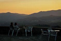 panorama dal Podere Castellare - Eco Resort of Tuscany, seduti in tranqullità, davanti ai nostri vigneti, sorseggiando e gustando un bicchiere di buon vino. E in questa zona i vini di qualità non mancano davvero.....