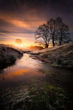 "sundxwn: "" The stream sunrise by SC Pictures* "" Near a creek in Auvergne sunrise, the ground is frozen and the sun is reflected on every blade of grass, France. All Nature, Amazing Nature, Beautiful World, Beautiful Places, Landscape Photography, Nature Photography, Nature Pictures, Pretty Pictures, Beautiful Landscapes"