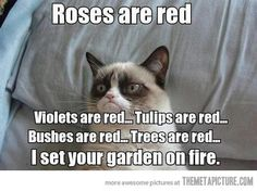 Your garden's on fire!