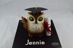 Graduation Owl Cake Cardiff Baker, Scrumptons Cakes and their incredible celebration cakes. There are cakes for every occasion including: anniversary, birthday, Easter, Halloween, Father's Day, Mother's Day, Valentines Day, Occasion Cakes, Graduation Cakes, Christmas Cakes. Subjects include: Cars, Star Wars, Dinosaurs, Animals, Harry Potter, Superheroes, Handbags, Basketball, Rugby Ball, Dr Who. Swiss Buttercream, Buttercream Filling, Vanilla Sponge, Chocolate Sponge, Cake Servings, Occasion Cakes, Celebration Cakes, Party Cakes, How To Make Cake