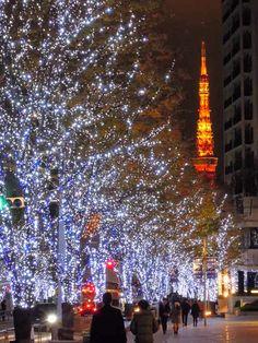 六本木ヒルズ けやき坂 クリスマスイルミネーション Tokyo Tower  #tokyotower #tokyo