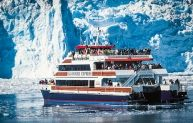 Get out for a great day tour, hike, or cruise with those who know Alaska best: a local guide.
