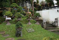 Jardin del maestro Amy Liang en Taipei, Taiwan. Foto del Facebook de Philippe Massard.