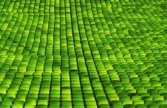 """""""Green Sea of Chairs,"""" By SophieMuc via Flickr"""