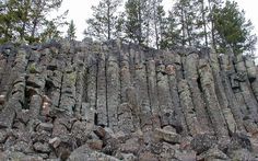 Sheepeaters Cliff, Yellowstone National Park, Wyoming.  Columnar Basalt