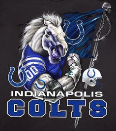 Rough season, but I still love me some Colts!!