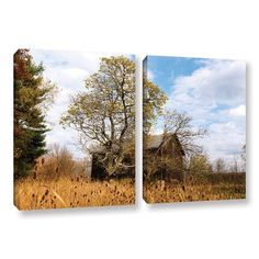 ArtWall Cvnp Barn by Cody York 2 Piece Photographic Print on Wrapped Canvas Set Size: