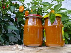 Recept na omáčku Chilli Recipes, Hot Sauce Bottles, Stuffed Peppers, Vegetables, Food, Stuffed Pepper, Vegetable Recipes, Eten, Stuffed Sweet Peppers