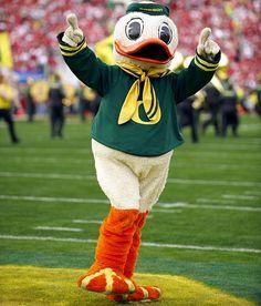 Oregon Ducks Mascot   Duck - University of Oregon - 2010 All-Mascot Team - Photos - SI.com