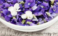 Herbal uses for viol